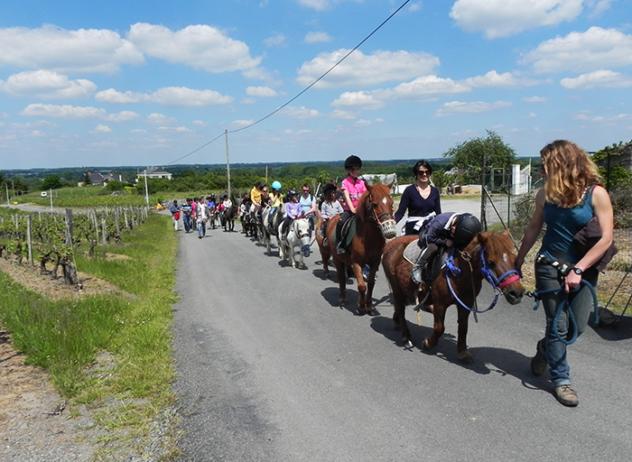 centre-equestre-la-pommeraye-maine-et-loire-randonnee-poney